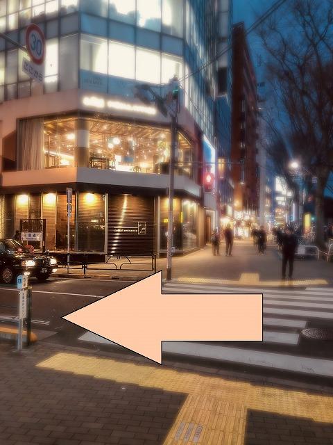 新宿花園通り左折
